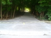 10138-new-long-winding-driveway-farmington-2