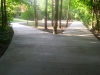 10138-new-long-winding-driveway-farmington-11