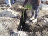 10229-trenched-footings-huntington-woods-4